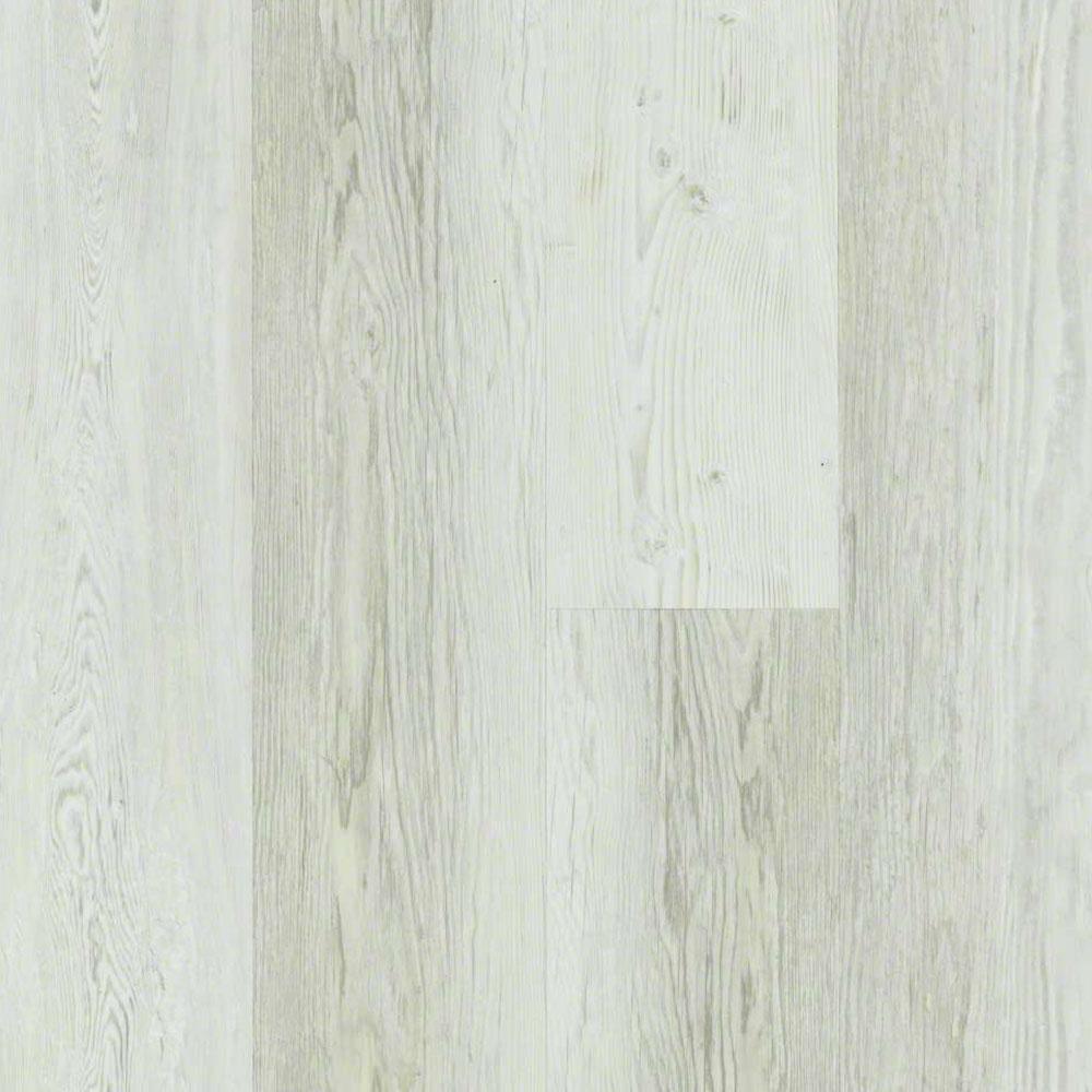 Basilica Century Pine | Budget Flooring, Inc.