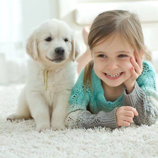 Kid and dog on carpet | Budget Flooring, Inc.