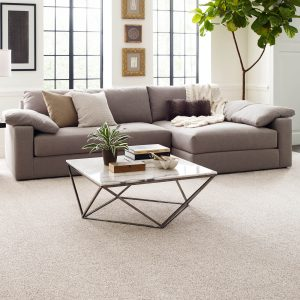 Perfect carpet in living rooms | Budget Flooring, Inc.