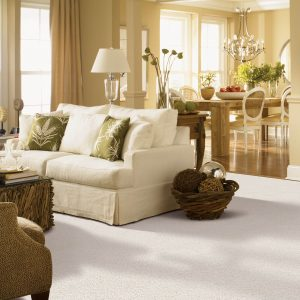 Gentle Approach of carpet | Budget Flooring, Inc.