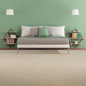 Carpet Inspiration Gallery | Budget Flooring, Inc.
