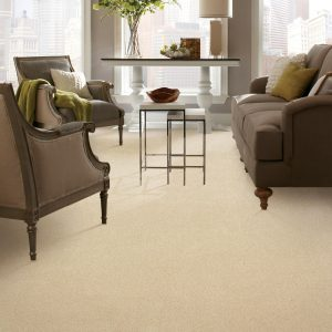 Carpet in living room | Budget Flooring, Inc.