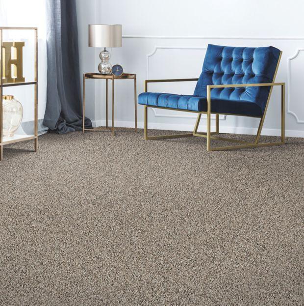 Remarkable carpet Vision | Budget Flooring, Inc.