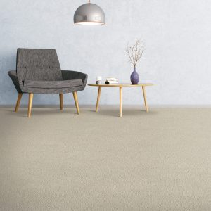 Soft comfort carpet flooring of the room | Budget Flooring, Inc.