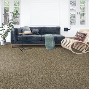 Soft intrigue carpet floor | Budget Flooring, Inc.
